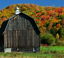 Fall in Northwest PA by Jcook