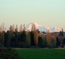 Mount Baker by Cmarcotte