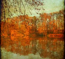 Autumn colours on water by Eugenio