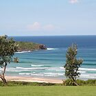 Killalea State Park by Jennifer Saville