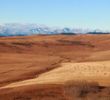 Hilly prairies by zumi