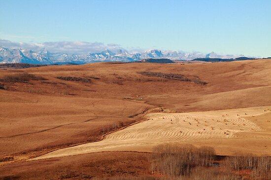 Hilly prairies by zumi