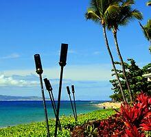 Aloha by Sean Jansen