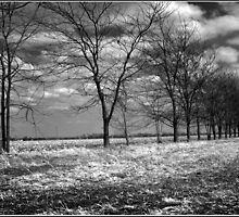 Long Cold Nebraska Winter by Rob & Jenni Erickson