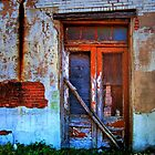 Old Doors by venny