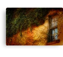 Window Grown Over Canvas Print