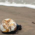Lost buoy and shell by steppeland