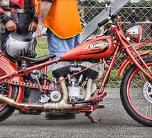 Indian ... ready to sprint, Teretonga by Tony Burton
