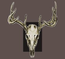 Stag Skull by Danelle Malan