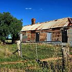 Old Tin House by SuzieCheree