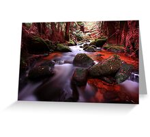 """""""Little Forester River-2"""" Greeting Card"""