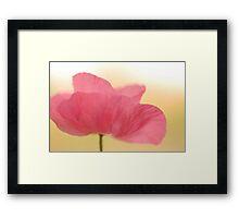 La Poppy Framed Print