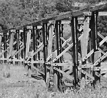 Timboon Trestle bridge by trishringe
