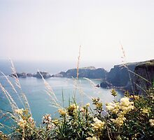Carrick a-rede, Northern Ireland by almulcahy