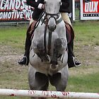 Moss Vale District Showjumping 7 by Samantha Bailey