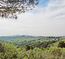 Toscana: Chianti Region by Ralph Angelillo