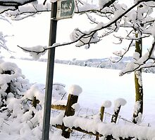 Snowy Footpath by CharcoalPoet