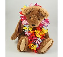 Teddybear Photographic Print