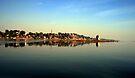 River Narmada by Vivek Bakshi