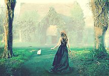 Searching for Wonderland by korinrochelle