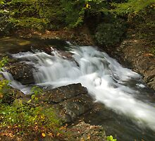 Laurel Creek Cascade by Gary L   Suddath