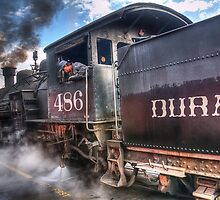 Durango & Silverton Narrow Gauge Railroad by Ted Lansing