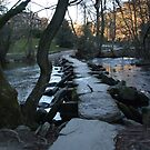 Tarr Stepps....Exmoor...Britian! by greenstone