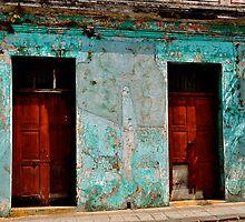 Dos Puertas by Valerie Rosen