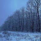 Frozen Weed Valley by reindeer