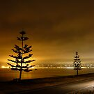 Napier, New Zealand by Shara