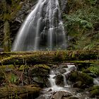 Christie Falls - Wedding Veil by Rick Ruppenthal