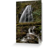 Christie Falls - Wedding Veil Greeting Card