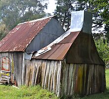 Old Shack - Hanging Rock, Nundle NSW by Bev Woodman