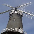 Windmill Sails by MichelleRees