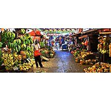Banana Kingdom Photographic Print