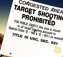 Target Shooting by Philip Cozzolino