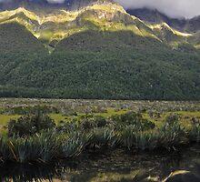 Mirror Lakes, South Island, New Zealand by paultclarke