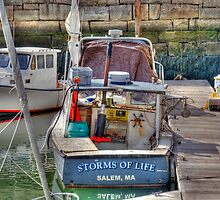 Storms of Life by Monica M. Scanlan