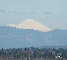 Mount Baker by michardson