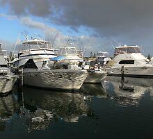 Forster Marina by PhotosByG