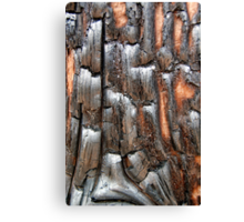 Charred Canvas Print