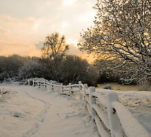 Sunrise Over Snow by Eddie Howland
