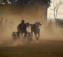 BEYOND FINISH LINE by RakeshSyal
