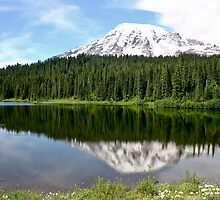 Reflection Lake and Mt. Rainier  by Barb White