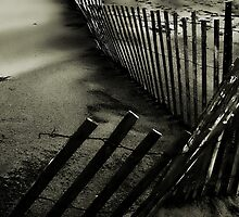 Fence in the Sand by JD Dorosiewicz
