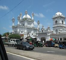 Mosque In Sri Lanka by Camille Jackson
