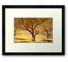 Water reflection X I!... Framed Print