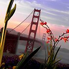 Golden Gate Garden View by Elizabeth Hoskinson
