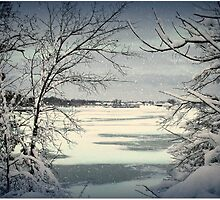 Winter in Ohio by imagesbylori