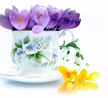 A cup full of Spring by Yool